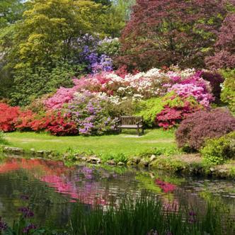 Gärten-in-Südwestengland-Eventreise-8