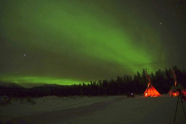 Nordlicht-Beobachtung nahe Whitehorse