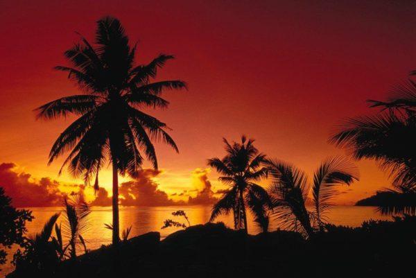 malerische Morgenröte auf den Seychellen