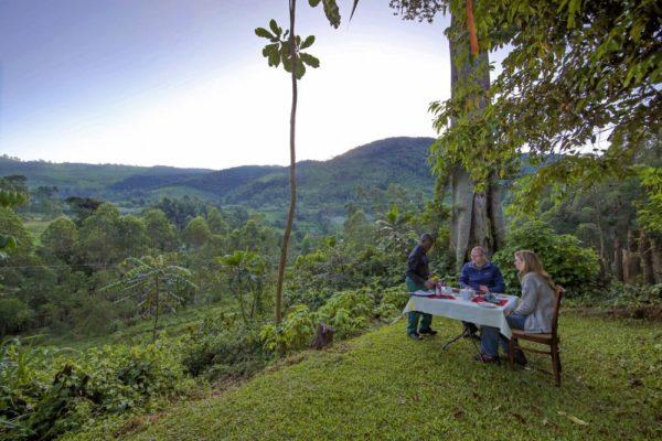 Mahogany Springs Lodge – Buschdinner