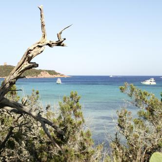 Korsika In 15 Tagen die Vielfalt Korsikas auf einer Studienreise mit Wanderungen erleben