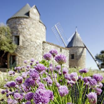Languedoc – Roussillon Mit Studiosus den Süden Frankreichs erleben: in Toulouse