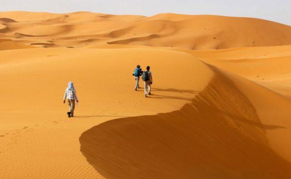 die Weite der Wüste