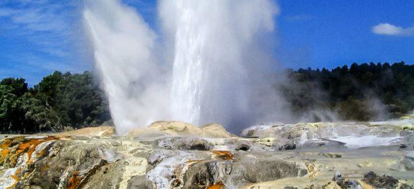 Pohutu Geysir in Rotura