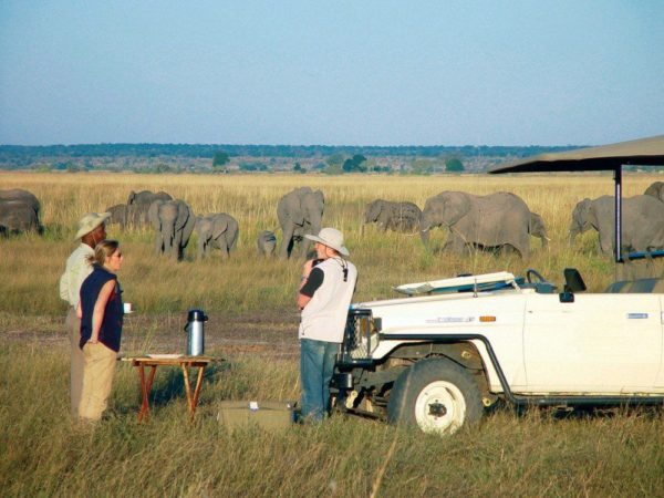 Auf Safari im Chobe-Nationalpark