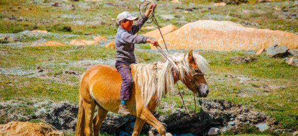 Junge auf Pony