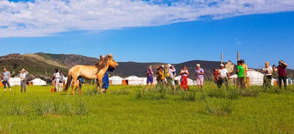 Jurtencamp der Nomadengemeinde Gurvanbulag