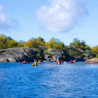 ajakgruppe im Archipelago Nationalpark - Aavameri
