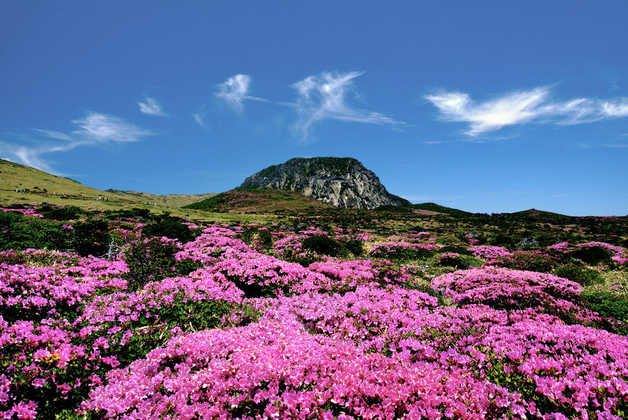 Mount Hallasan auf Jeju - Remy Dupont