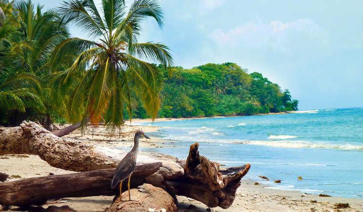 Am Strand im Cahuita-Nationalpark - Julia Becker