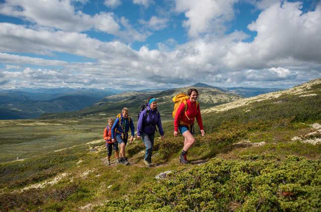 Wanderung im Rondane-Nationalpark - Mountains of Norway - © Mountains of Norway