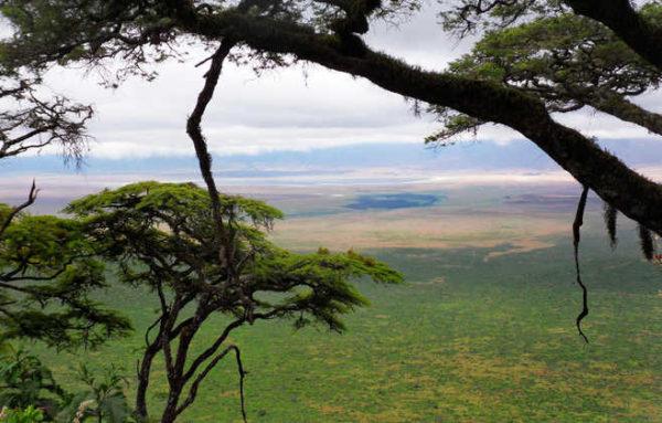 Congo-Nile-Trail am Kivusee - Juan Dobler