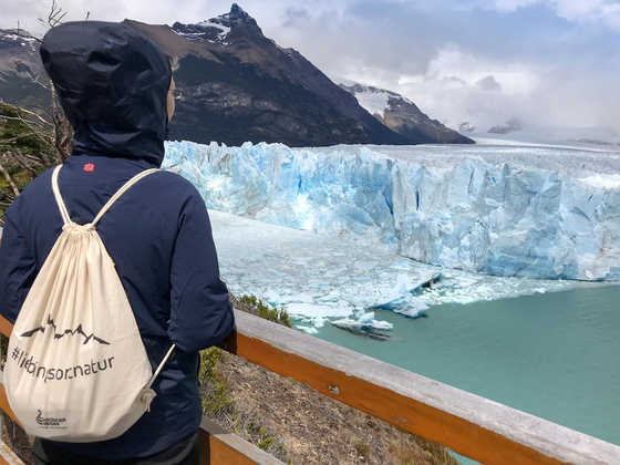 Kalbender Perito Moreno-Gletscher - Eleonore Große Höötmann