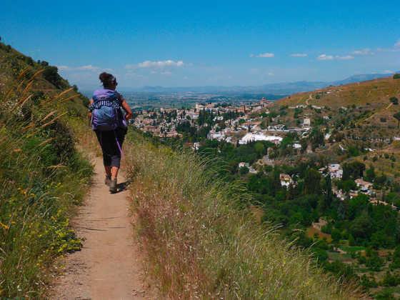 Blick auf Granada - Lyudmyla Schwab