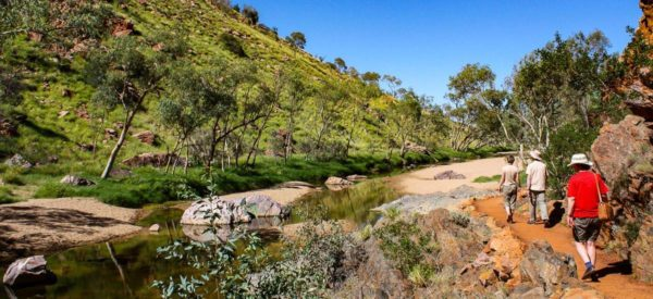 Wandern am Ellery Creek