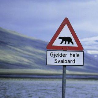 Norwegen – Spitzbergen deutschsprachig gefuehrte Studienreisen 2019 /2020  | Tinta Tours Erlebnisreisen