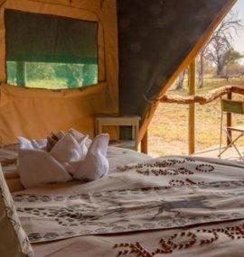 O Bona Moremi Safari Lodge