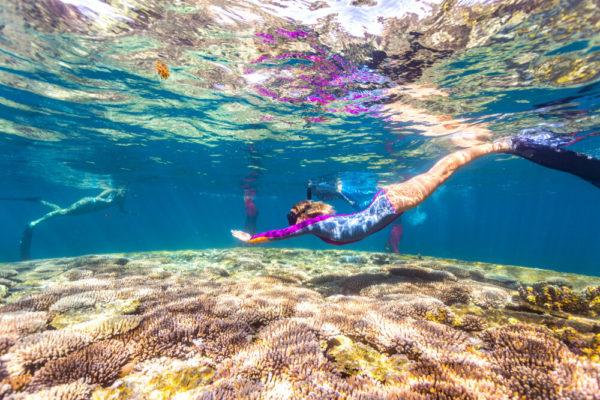 Schwimmen und Schnorcheln in der Coral Bay