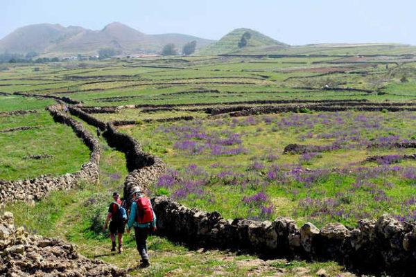 Wanderung über Weidehochland nach San Andrés - Waltraud Strauß