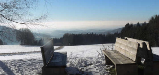 Auf der Sonnenalm - Monika Schmidmeier