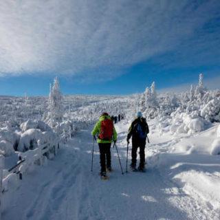 Im Winterwunderland - Holger Schwenk