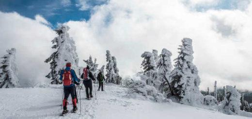Auf dem Gipfel des Lusen - Christiane Timm