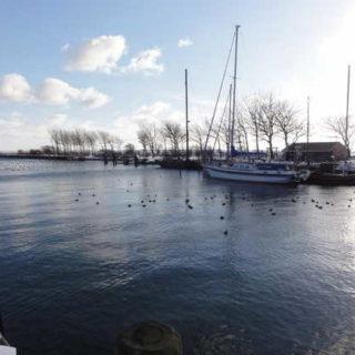 Hafen auf Fehmarn - Tourismus-Service Fehmarn