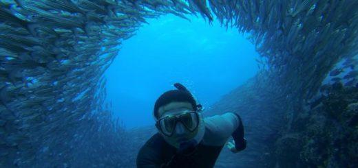 EcuadorSegelreisen | Tinta Tours Erlebnisreisen