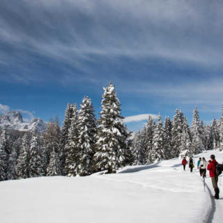 Winterwandern in den Alpen - Oliver Schulz