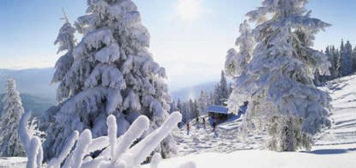 Winterlandschaft im Bayerischen Wald - Hotel Hubertus Grafenau