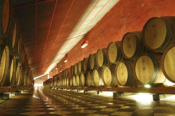 Weinkeller - vini Portugal