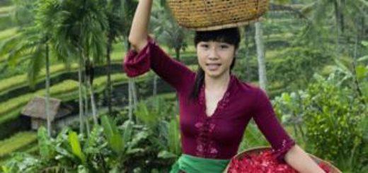 Indonesien deutschsprachig gefuehrte Studienreisen 2019 /2020  | Tinta Tours Erlebnisreisen