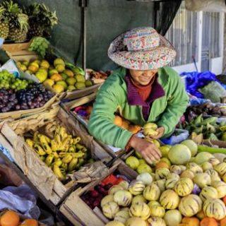 Peru deutschsprachig gefuehrte Studienreisen 2019 /2020    Tinta Tours Erlebnisreisen