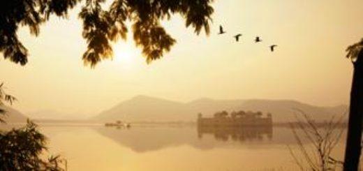 Rajasthan deutschsprachig gefuehrte Studienreisen 2019 /2020  | Tinta Tours Erlebnisreisen