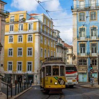 Azoren Gruppenreise | Tinta Tours Erlebnisreisen
