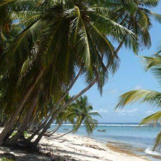 Dominikanische Republik Gruppenreise 2020/2021 Karibik