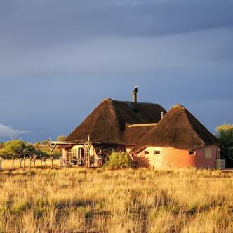 Rundreise zu den Höhepunkten Namibias zwischen Namibwüste und Etoscha-Nationalpark