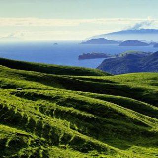 Neuseeland deutschsprachig gefuehrte Studienreisen 2019 /2020  | Tinta Tours Erlebnisreisen