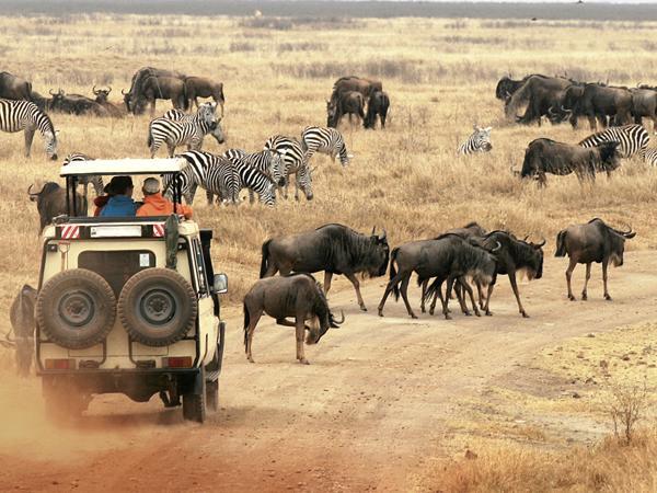 Tansania Erlebnisreisen 2016 / 2017