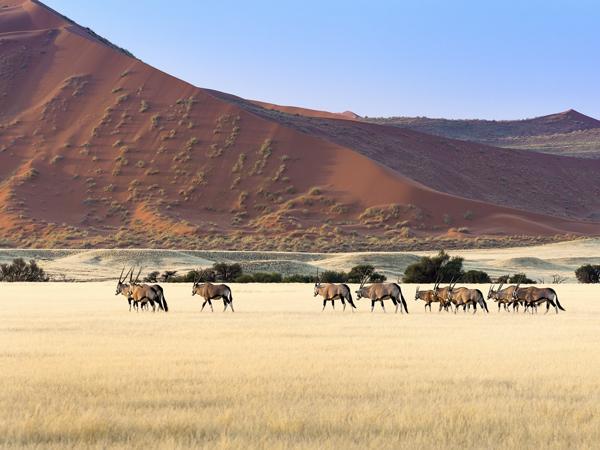 Namibia Erlebnisreisen junge Traveller 2019