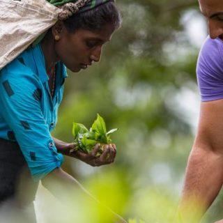12-Tage-Adventure-Trip Discover Sri Lanka | Erlebnisrundreisen.de