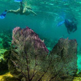 9-Tage-Adventure-Trip Explore Belize | Erlebnisrundreisen.de