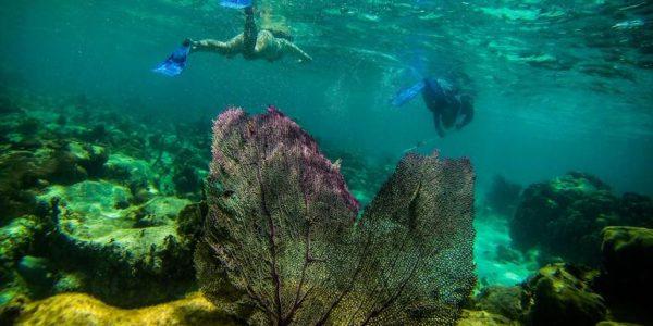 9-Tage-Adventure-Trip Explore Belize