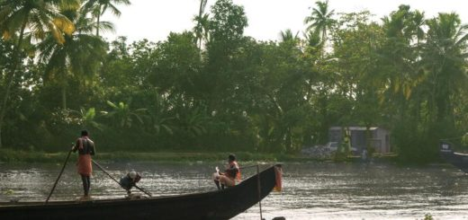 7-Tage-Adventure-Trip South India: Explore Kerala   Erlebnisrundreisen.de