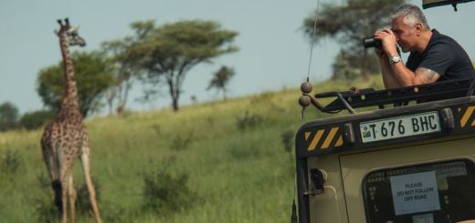 7-Tage-Adventure-Trip Tanzania Safari Experience   Erlebnisrundreisen.de