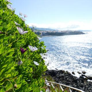 8-Tage-Erlebnisreise Azoren 2020/ 2021 | Erlebnisrundreisen.de