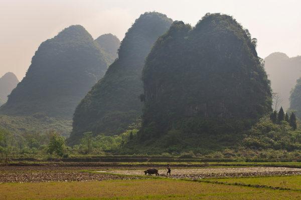 21-Tage-Erlebnisreise China 2020 / 2021 | Tinta Tours Erlebnisreisen
