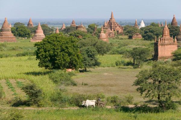 15-Tage-Erlebnisreise Myanmar 2020 / 2021 | Tinta Tours Erlebnisreisen