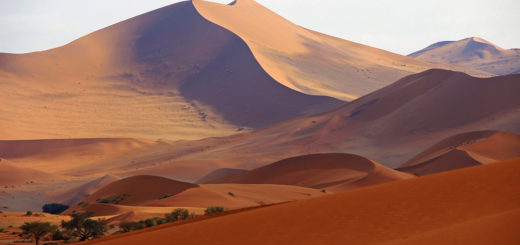 13-Tage-Erlebnisreise Namibia 2020/ 2021 | Erlebnisrundreisen.de