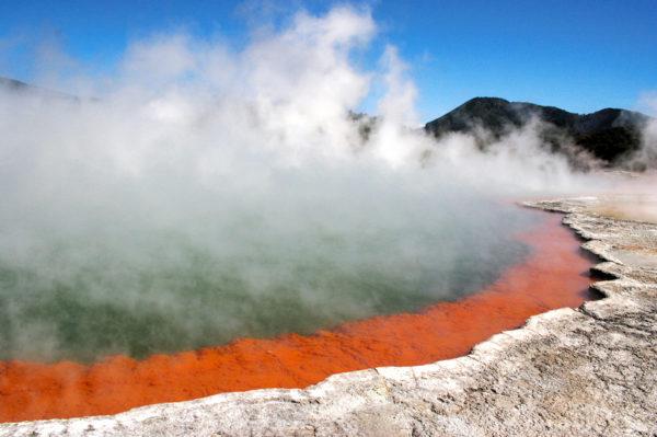 Neuseelandsafari Erlebnisreise - 2020 / 2021   Tinta Tours Erlebnisreisen